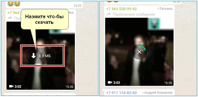 Скачать видео в WhatsApp