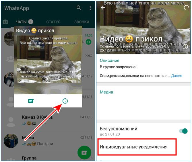 Индивидуальные уведомления Whatsapp