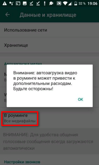 Автосохранение в роуминге в WhatsApp