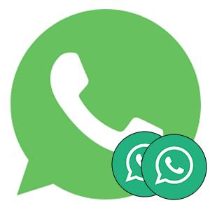 Два WhatsApp