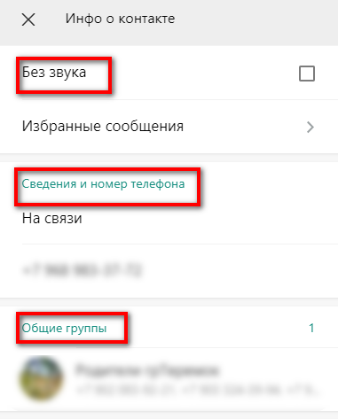 О контакте в WhatsApp WEB