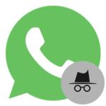 Как скрыть чат в WhatsApp — несколько простых способов